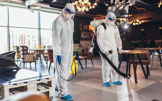 two amco service techs disinfecting a restaurant