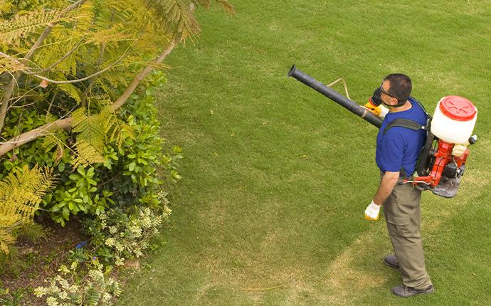 pest control technician treating a yard
