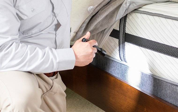 inspection inside home