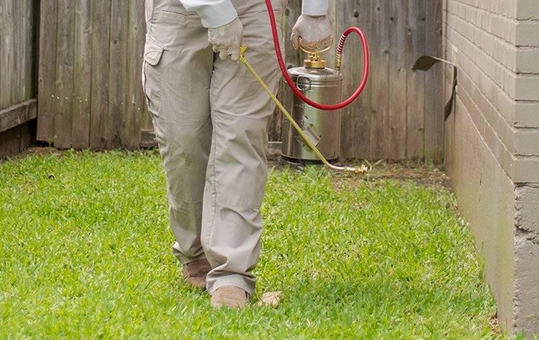 exterior spray service