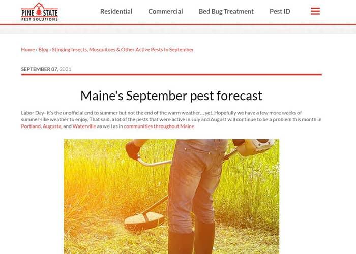 a pine state pest solutions blog