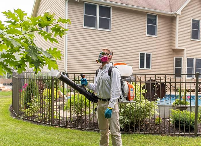 pest control tech spraying for mosquitoes and ticks in auburn maine