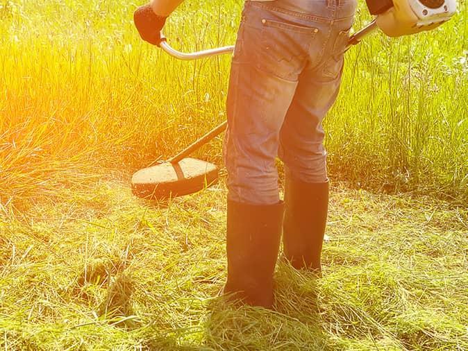 maine man weed whacking near wasp nest in ground
