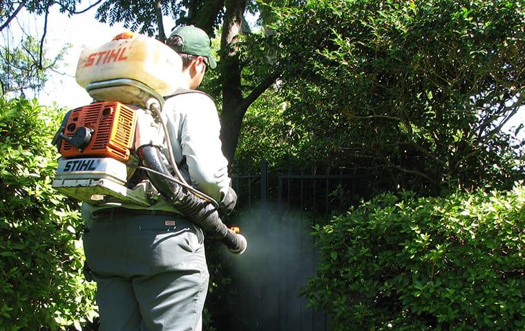 a technician is treating yard for mosquitoes in orange texs