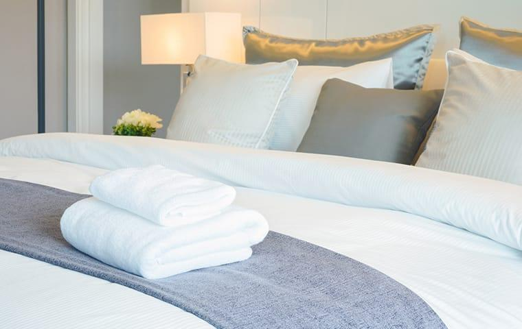 a clean bed bug free hotel room in beaumont texas