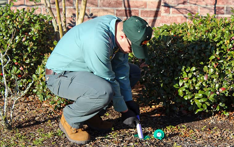 technician checking for termite evidence in conroe texas