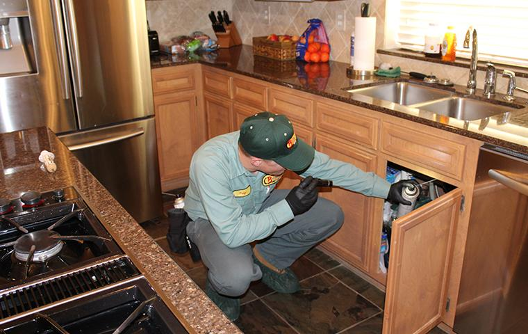 pest control technician treating southeast texas home