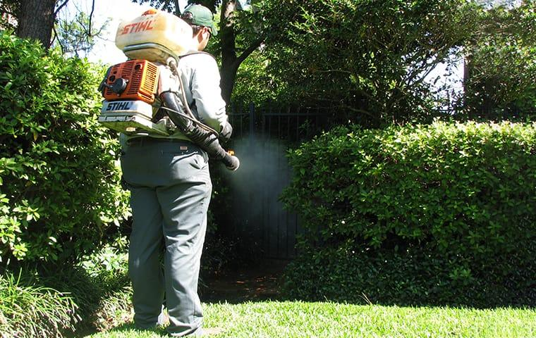 technician performing mosquito control