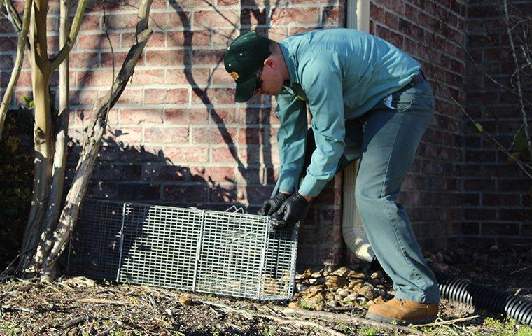 a service technician setting up wildlife control equipment in kirbyville texas