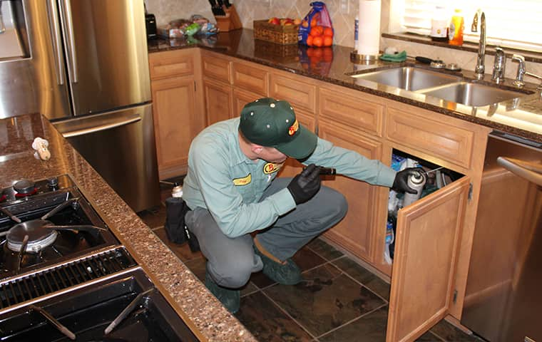 a bill clark bugsperts service technician inspecting a residential kitchen for pests inside of a home in lumberton texas