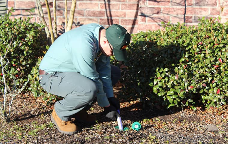a bill clark bugsperts service technician setting up a termite control station outside of a commercial business in lumberton texas