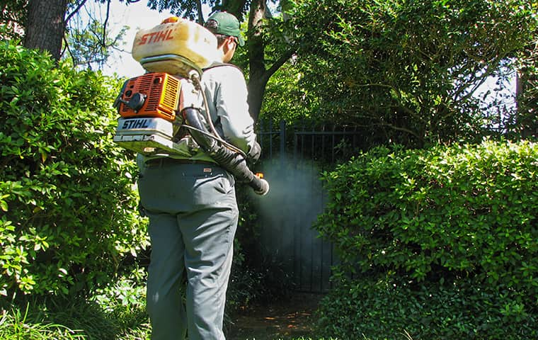 technician treating yard for mosquitoes in montgomery texas