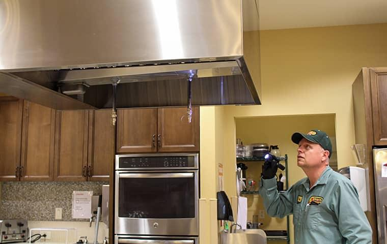 a pest control technician inspecting a commercial kitchen in nederland texas