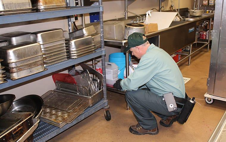 technician servicing a pineland commercial business