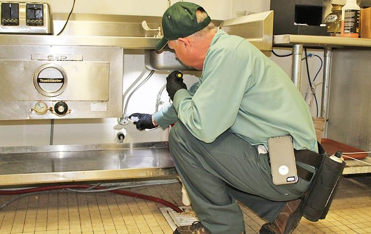 a pest control technician inspecting a commercial kitchen in spring klein texas