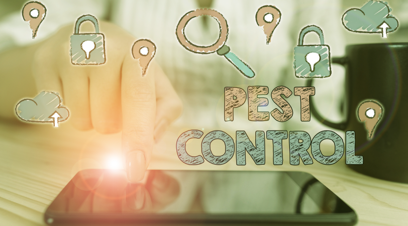 digital marketing pest control