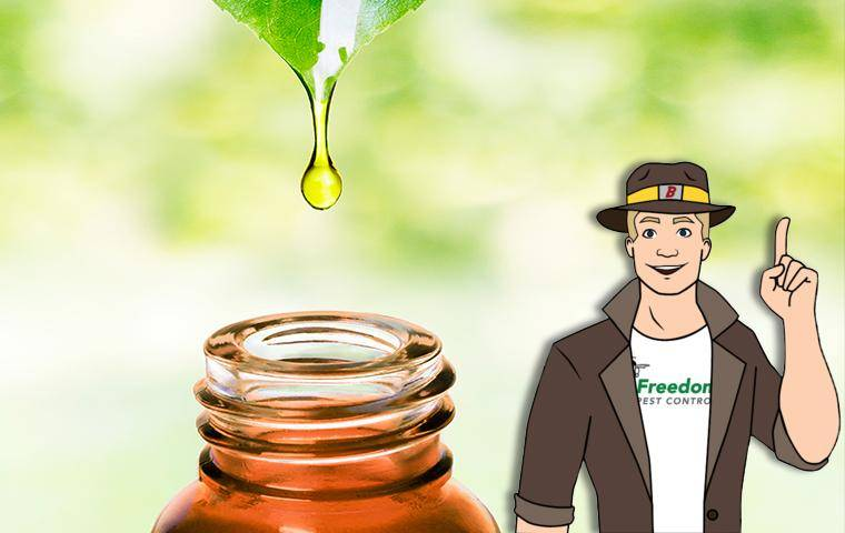 oil going into a jar and company mascot buster