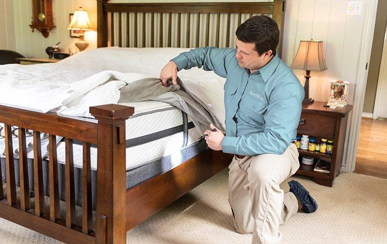 a pest control technician inspecting a mattress for bed bugs