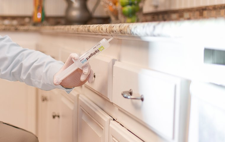 a pest control service technician performing pest treatments inside a home