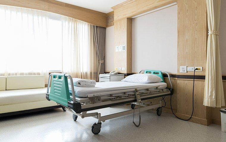 a hospital room protected by bed bug control