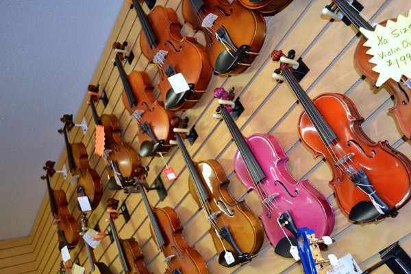 Great assortment of violins!