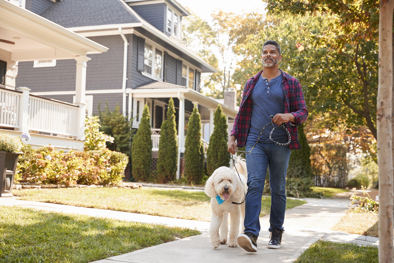 A man walking a dog down a suburban sidewalk