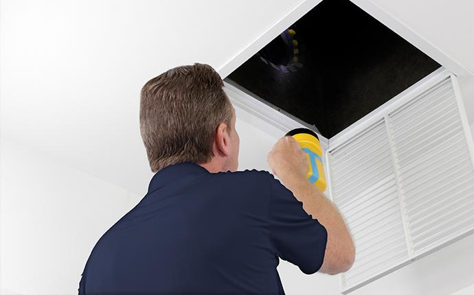 pest control technician inspecting vent