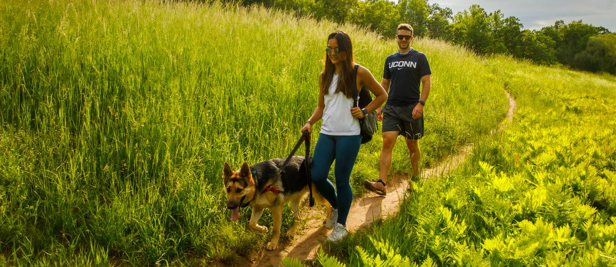 Two people and a dog walk on a grassy trail.