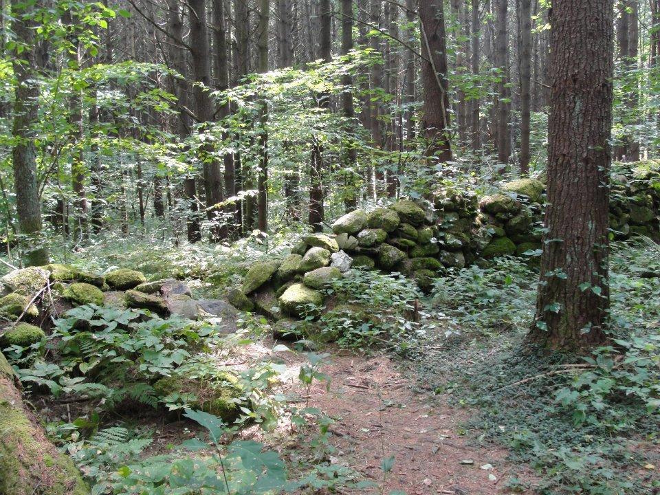 A narrow trail passes through a gap in a rock wall