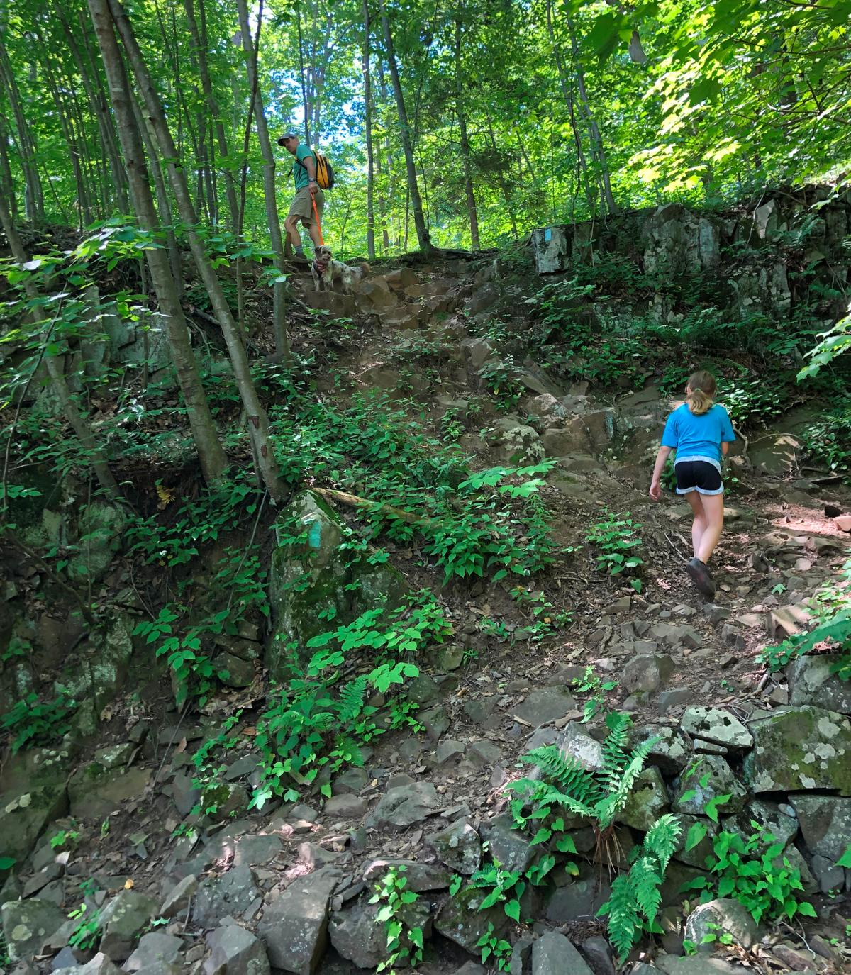 A girl climbs a trail with switchbacks