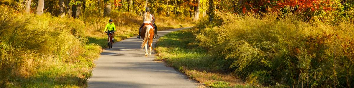 A cyclist and an equestrian greet each other on a paved trail
