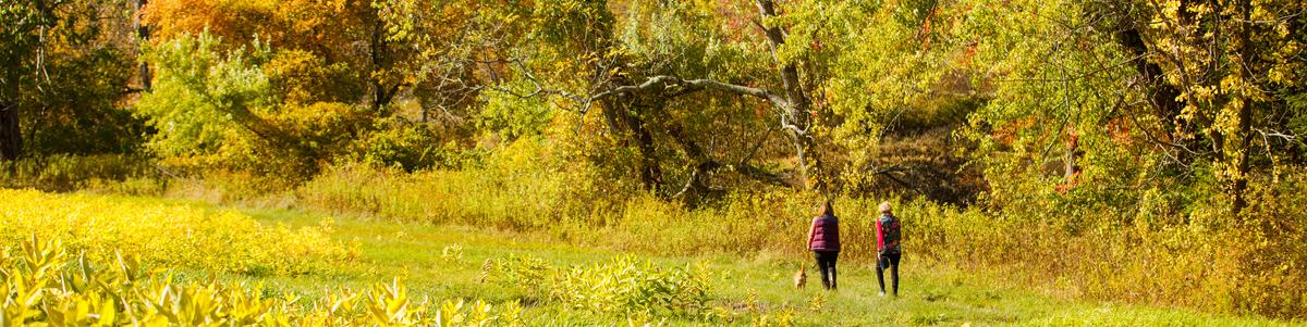 Two women walk along the edge of a field
