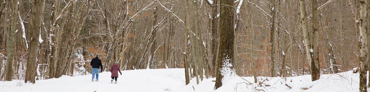 A man and a woman walk on a snowy trail.