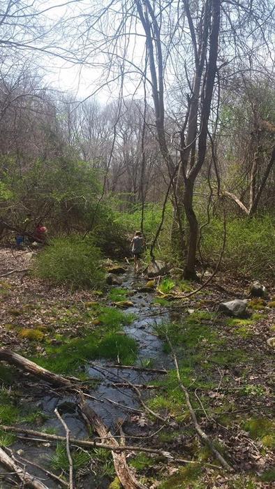 Ansonia Nature Center Trails