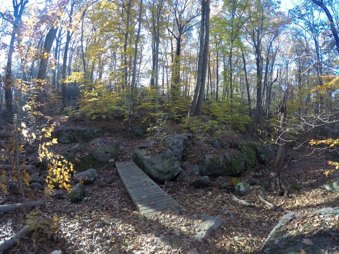 Late Autumn at Barrett Preserve (Credit: Kimberly Bradley)