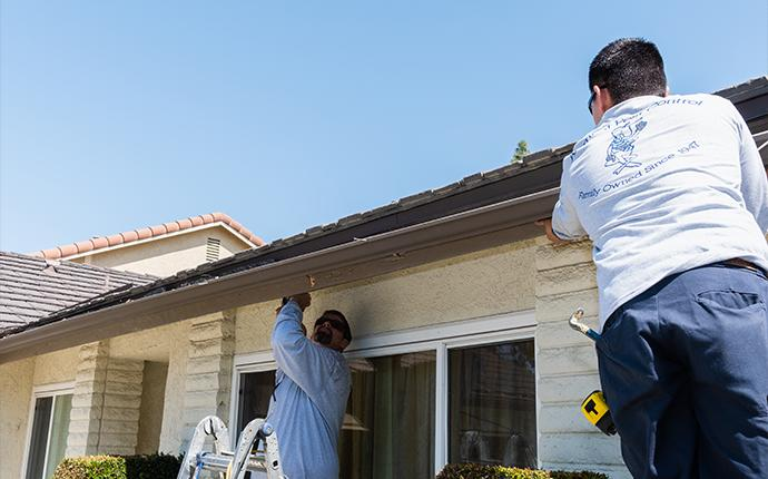 technician repairing termite damage on house