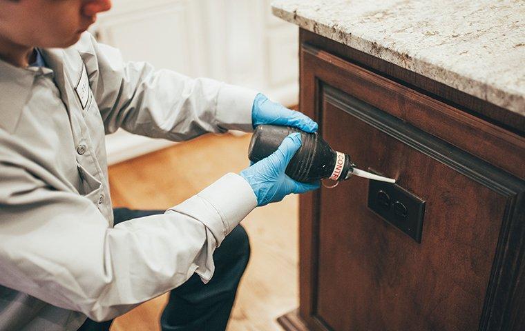tech applying bait around home