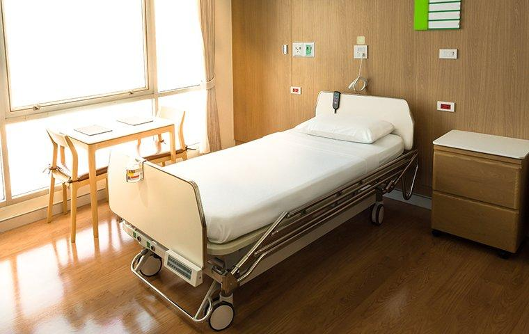 a bed bug prevention plan in a hospital room