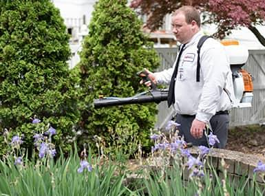 a profession pest control technician treating a bettendorf lawn for preventative mosquito control