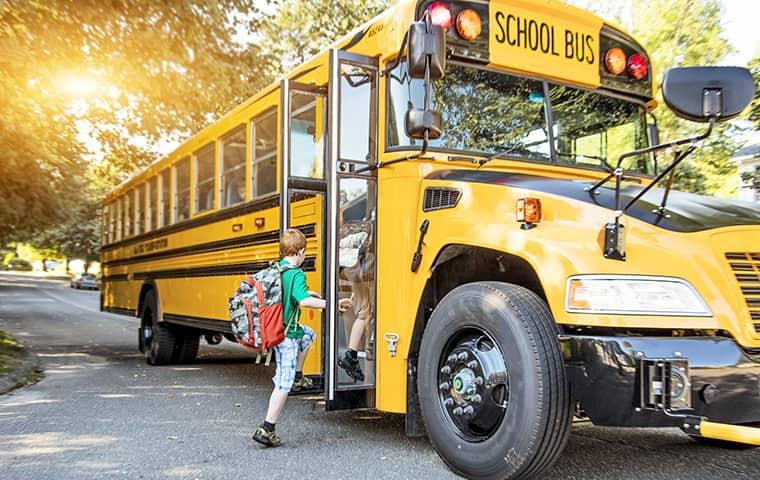 a child boarding a big yellow school bus on a late summer morning as he is unaware of his classmates bed bug infestation
