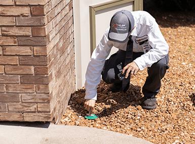 technician installing termite bait station