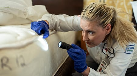 a female pest technician inspecting a bed for bed bugs in dunlap illinois
