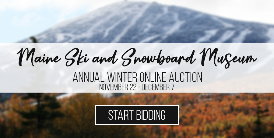 Annual Winter Online Auction