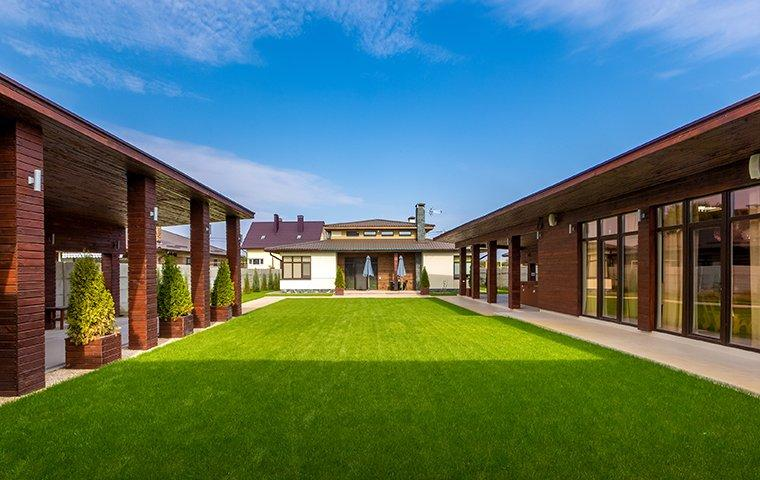 a beautiful lawn in a back yard