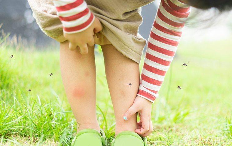 Mosquitoes biting a child in a yard.