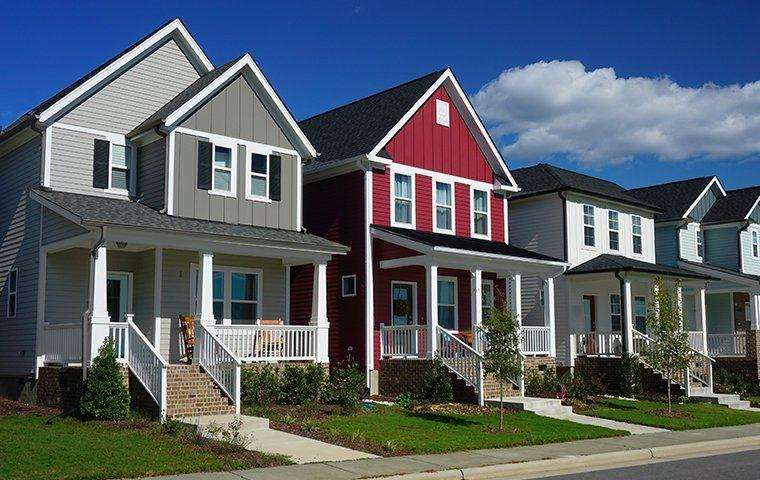 a neighborhood of pest free homes in lafayette colorado