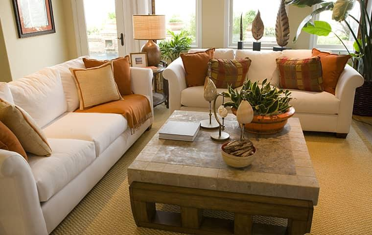 a living room in mission texas treated for common pests