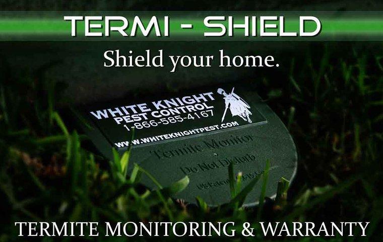 termi shield termite monitoring