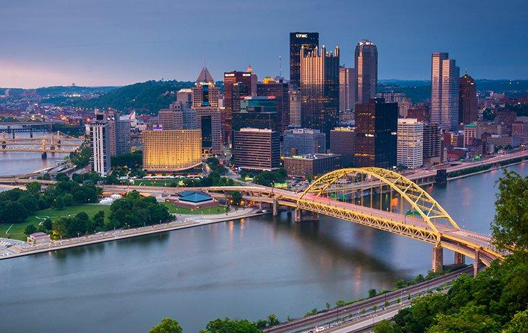 skyline view of pittsburgh pa