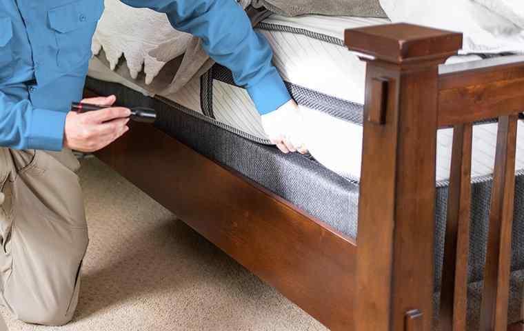 a tech inspecting a mattress in home